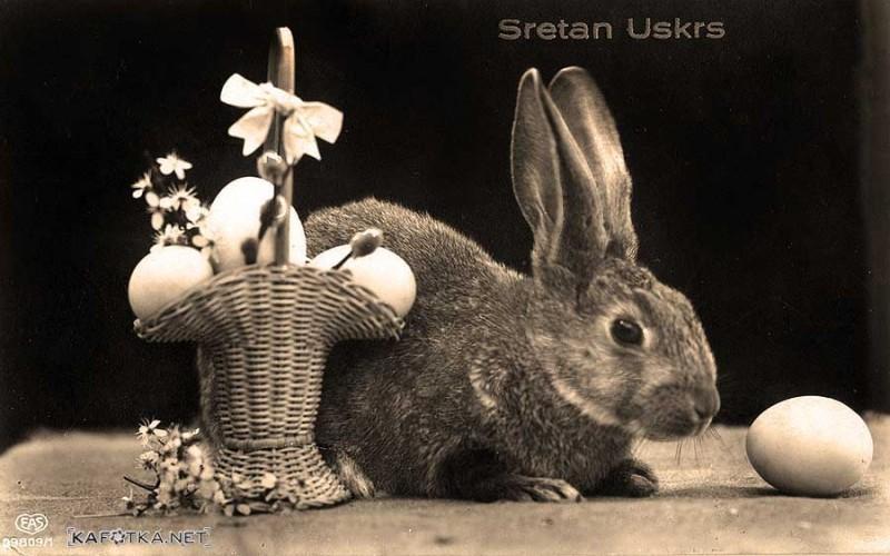 sretan uskrs razglednice Razglednica/čestitka   Sretan Uskrs! | KAfotka sretan uskrs razglednice